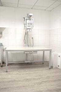 Tierarztparxis Hinterland. Dautphe - Dautphetal. Leistungen
